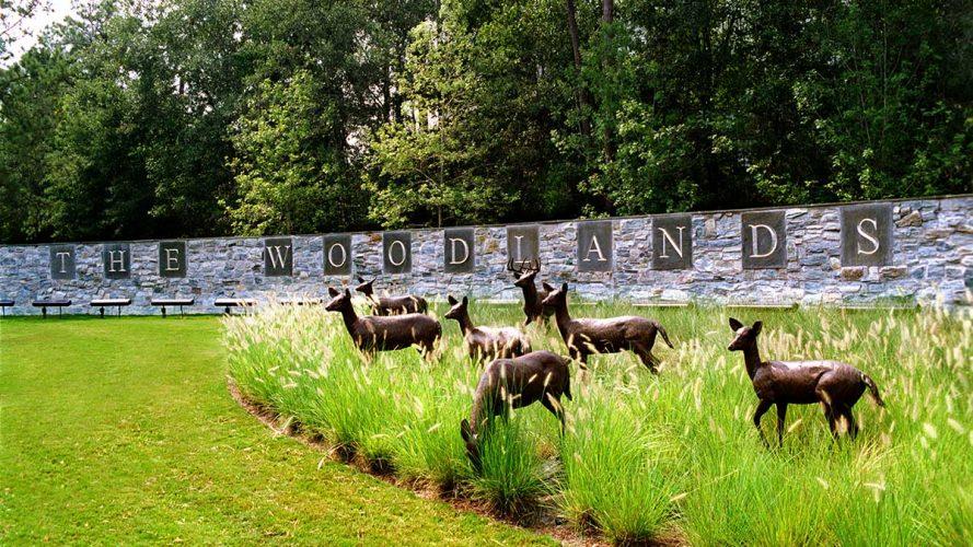 1_woodlands-tx-entrance